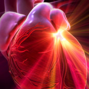 6 Most Common Heart Diseases