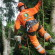 Things To Know Before Hiring Tree Surgeons Ruislip