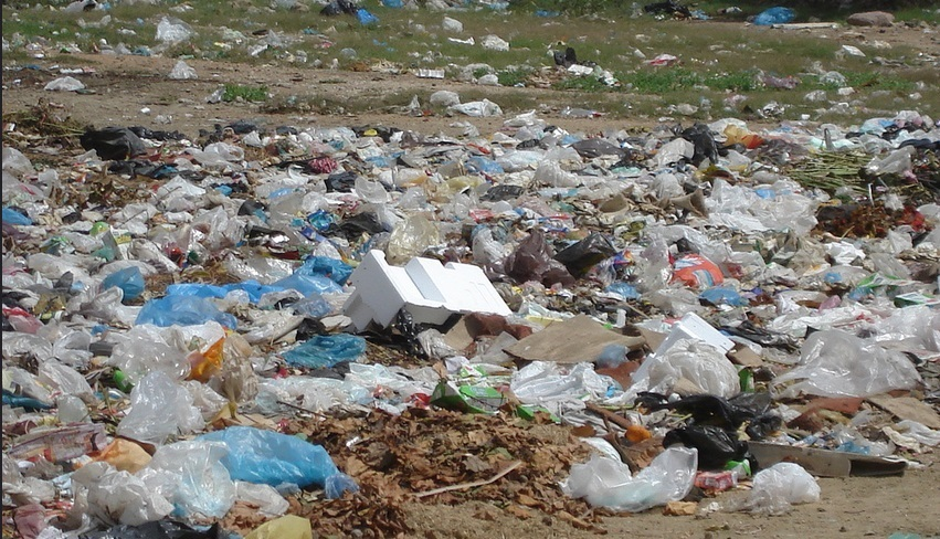 7 Facts That Show Plastic Bags Are More Harmful Than Paper Bags