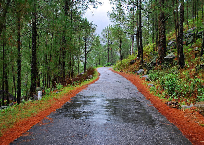 Kausani - The Switzerland Of India As Commented by Mahatma Gandhi