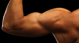 5 Ways To Gain Muscle Mass In The Minimum Possible Time