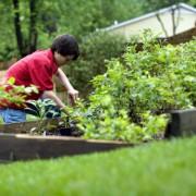 A Couple of Truly Inspiring DIY Garden Ideas