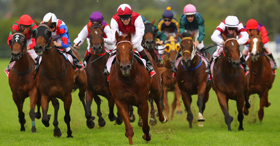 Tips To Win At Horse Racing (Kentucky Derby)