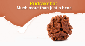 Rudraksha: Much More Than Just A Bead