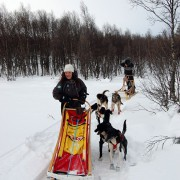 7 Fun Things You Can Do In Northern Norway On This Winter   tingtau.com