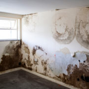 A Brief About Damp- Signs, Cause, And Treatment