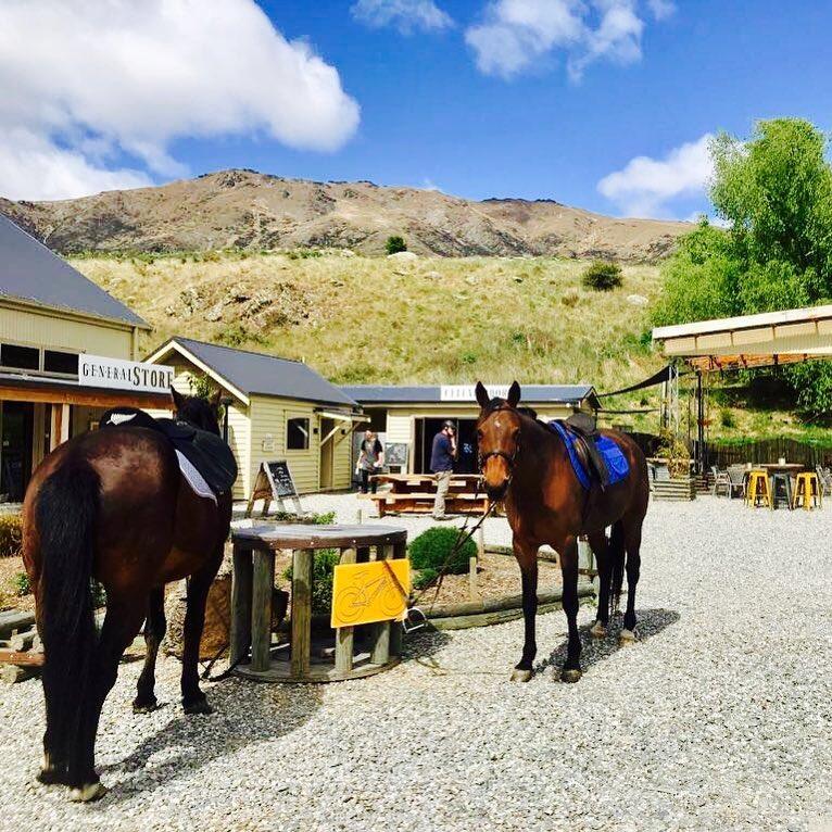 Relaxing In New Zealand