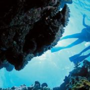 Preparing For Scuba Diving and Water Rafting Activities: A First-timer's Guide