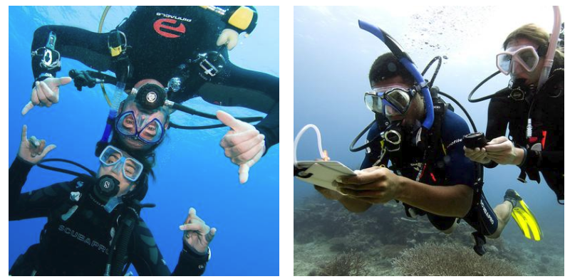 Scuba Diving Classes In Miami: Some Helpful Tips To Teach Scuba Diving To Kids
